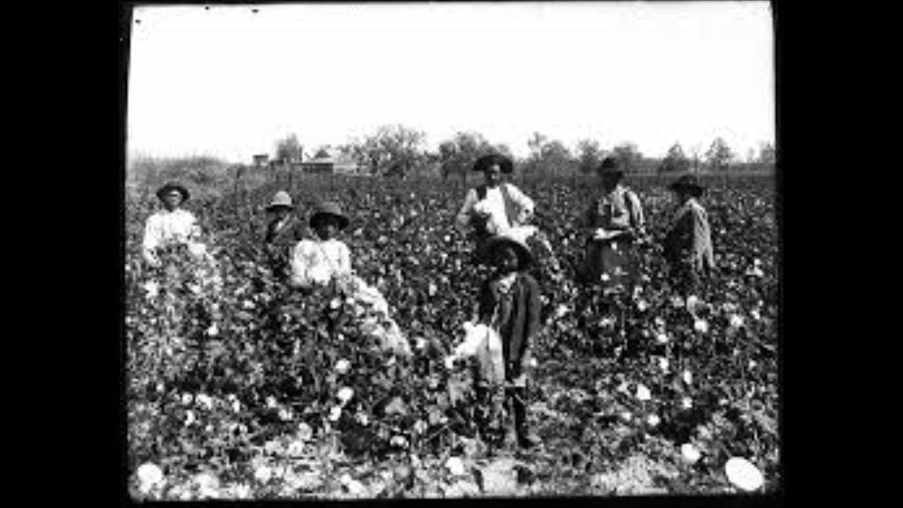 the role and value of slaves and slave markets in the antebellum south