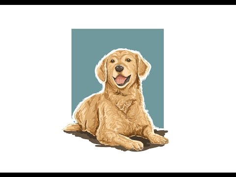 Time lapse Adobe Illustrator : Dog Vector Painting Illustration