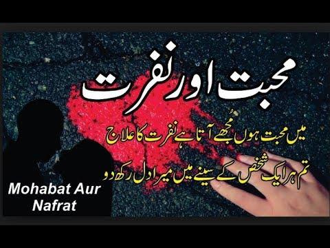 Mohobat or Nafrat || 2 lines Urdu Poetry || #Love #Hate Shanzy Fayyaz