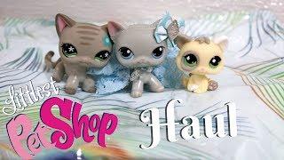 Littlest Pet Shop LPS Mercari Package (Rare Pets)
