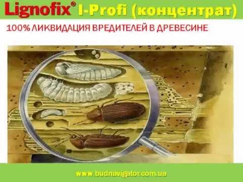 Антисептик для ликвидации вредителей древесины Lignofix
