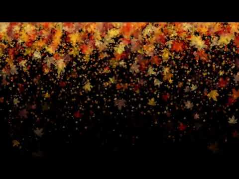 [10 Hours] Falling Leaves in Autumn Fall - Video Only [1080HD] SlowTV