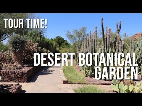 Tour Time! -- Desert Botanical Garden in Phoenix Arizona