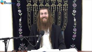 pesaj – el correcto orden de la vida rab yonatán d galed