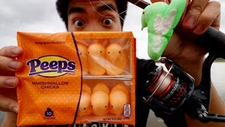 crazy easter fishing challenge can i catch fish on peeps