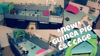 (Chit Chat) OLD Guinea Pig C&C Cage Upgrades!