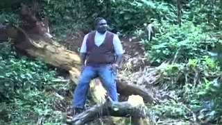 Lucius Banda - mtengo mtengo