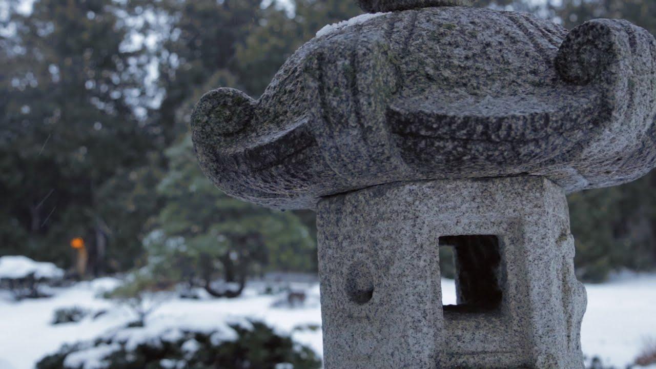 winter coffee break in the japanese garden youtube
