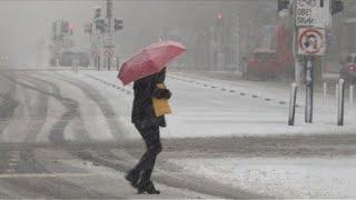 Washington sous la neige au 2e jour du printemps