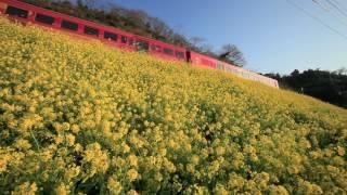 春のJR四国予讃線 海回り