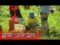 Brigada: Onion smuggling, talamak sa bansa