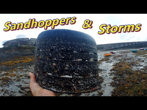 Sandhoppers & Storms - Beachcombing Fishing Gear Rescue And Boat Issues