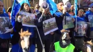 6 marzo 2015 - Flash Mob Animalisti a Villa Borghese 4