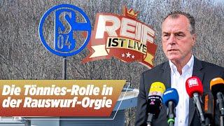 Rauswurf-Orgie auf Schalke: Welche Rolle spielt Tönnies? | Reif ist Live