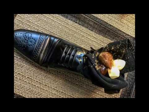 Netanyahu Insults Japans Prime Minister By Serving Him Dessert In A Shoe