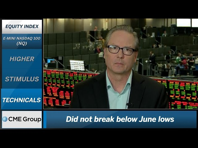 August 19 Equities Commentary: Dan Deming