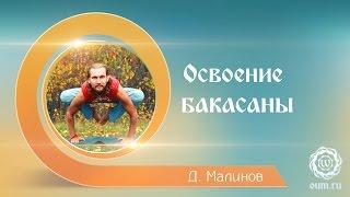 Как освоить? Бакасана (Денис Малинов asanaonline.ru)