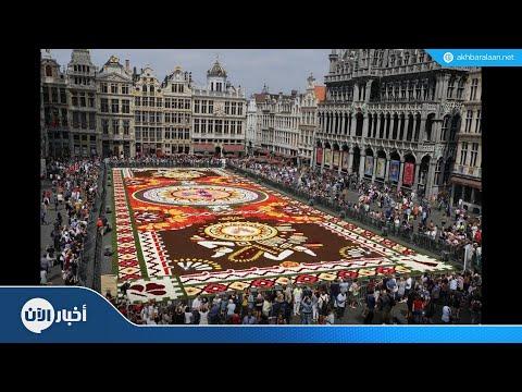 نصف مليون زهرة تزين وسط بروكسل  - نشر قبل 31 دقيقة