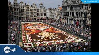 نصف مليون زهرة تزين وسط بروكسل