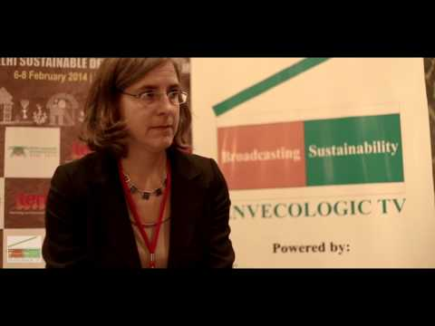 Dr Ines Dombrowsky, Head of Environment and Resource Policy, German Development Institute