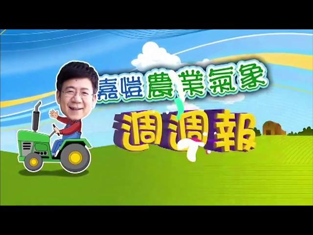 2020.04.27─嘉愷農業氣象週週報