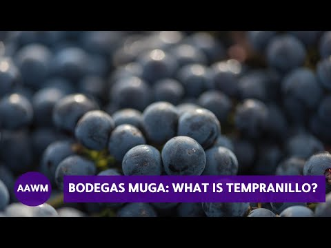 wine article Juan Muga describes Tempranillo