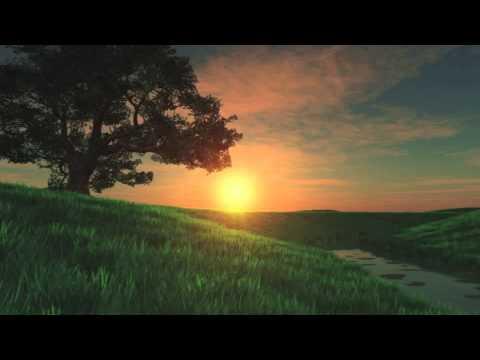 The Gospel of John Full [Catholic Audio]