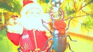 Животные. Новый год. Новогодний мультик. Дед мороз и жук