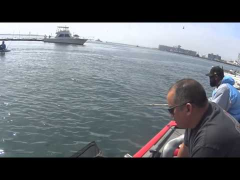 Fishing The San Diego Bay Weekend of 6 22 2014