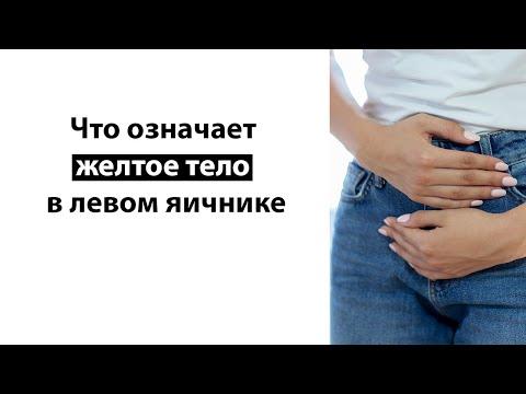 Болит после овуляции желтое тело