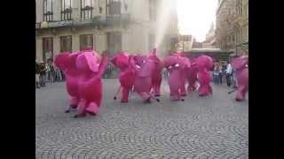 Розовые слоники Прага  (Видео Турист)(Видео Турист Розовые слоники Прага (Видео Турист), 2015-04-16T03:17:59.000Z)