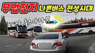 [노라준카 블랙박스]신호무시는 기본, 버스들의 전성시대…