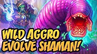 Wild Aggro Evolve Shaman!   Saviors of Uldum   Hearthstone