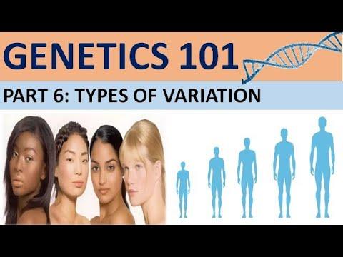 GENETICS 101 (Part 6)  Types of Variation CXC Biology Tutor