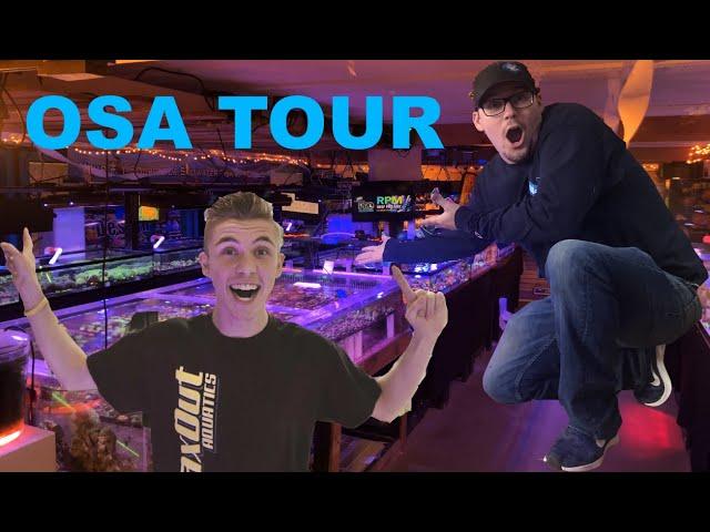 Ocean State Aquatics store TOUR!!!