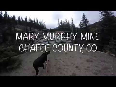 Mary Murphy Mine Treasure Hunt