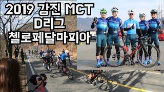 2019 강진mct_D리그 갤러리 응원영상 업로드했오용^^