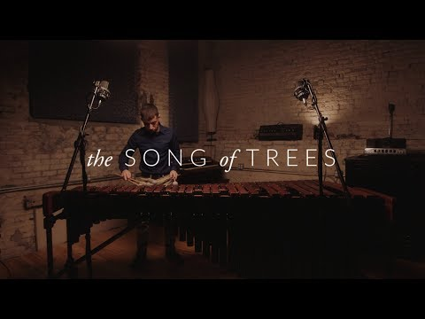 """The Song of Trees"" by Keiko Abe"
