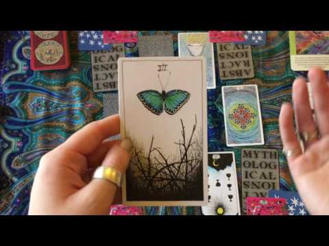 Capricorn August 2017 - Calling in healthy relationships!