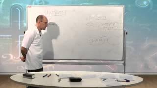 видео Понятие «институт»