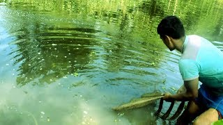 Awesome Fishing Video | New Technique Of Catching Country Fish | Unique Fish Trapping System