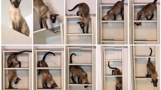 wall storage shelves ideas   shelving hacks