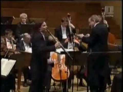 Mate Bekavac - Mozart Clarinet Concerto Part 1