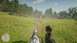 Red Dead Redemption 2 PS4 Pro Story (No commentary)