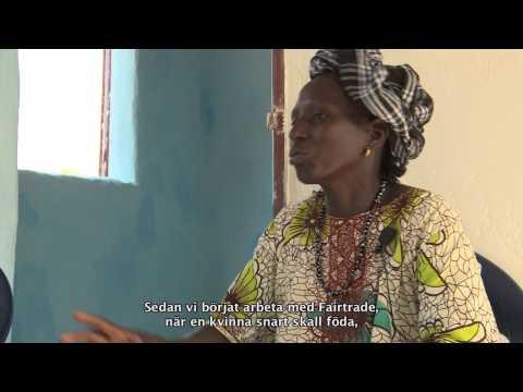 Vägen till Fairtrade märkt bomull