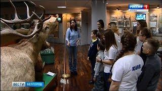 ГТРК Белгород - Дети с аутизмом находят друзей