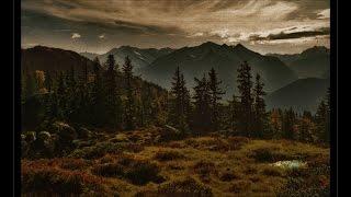 Der Nachtwanderer Lieder - Progressive Psytrance (mixed by DJ Sattva)