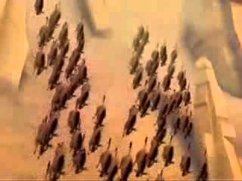 The Lion King 3d The Stampede Scene Youtube