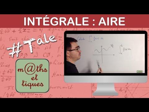 Calculer une intégrale par calcul d'aire - Terminale