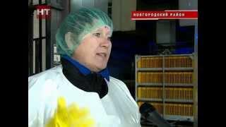 видео Работа : Вакансии - Новгородская